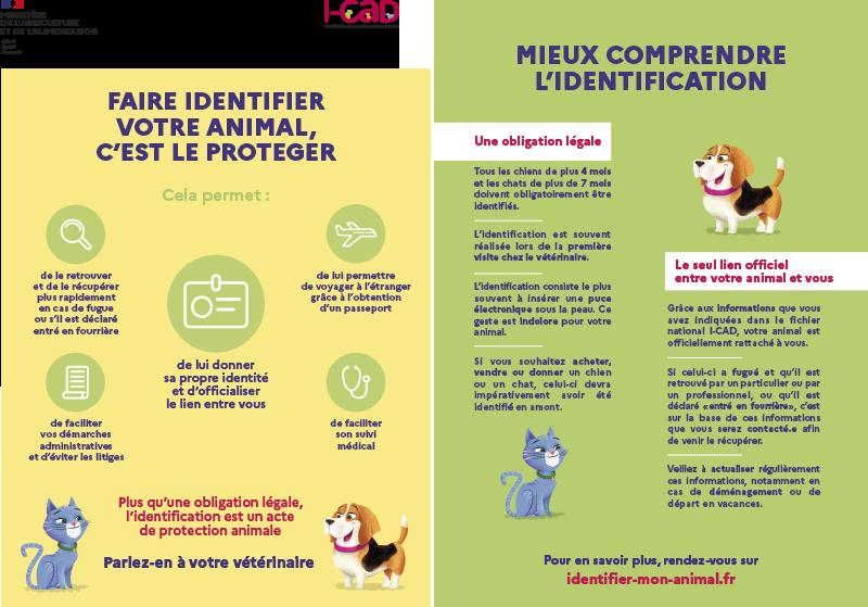 Affiche i-cad identification des animaux