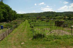 Jardins communaux