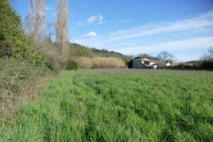 Pré : extension des jardins communaux
